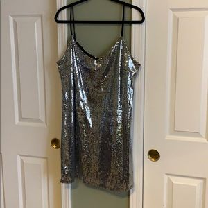 Wild Fable silver sequin dress